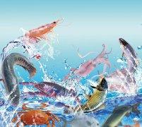 如何区分海鲜冷冻、急冻、生冻、熟冻、船冻、